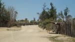 砂の道.JPG